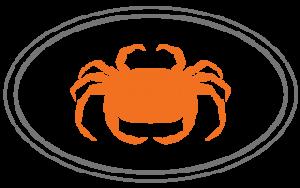 San Francisco Cooking School logo